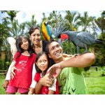 Bali Bird Park E-Ticket (Adult)