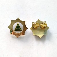 Mulyocreative Logo IPPNU Model Bintang Pin Lencana - Emas [2 pcs]