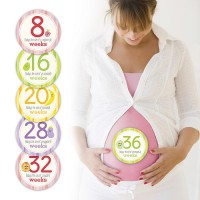 Pearhead Mommy Belly Stickers