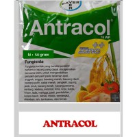 Fungisida ANTRACOL 70 W