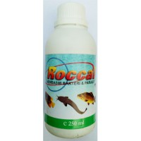 Roccal 250 ml