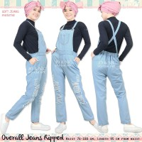 Sarah Ripped Soft Jeans Overall Pants