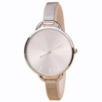 [Geneva] Ladies Fashion Quartz Analog Stainless Steel Strap