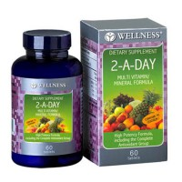 Wellness Multivitamin/Mineral 2-A-DAY (60 Tabs)