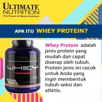 Ultimate Nutrition Prostar 100 Whey Protein 5 Lbs Chocolate Creme / pro star suplemen supplement
