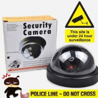 Kamera Camera CCTVDummy Tiruan Fake Dome [S013KCM]
