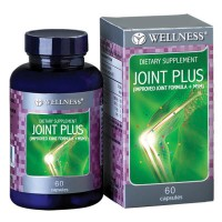 Wellness Joint Plus (60 Caps)