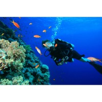 Dive in Nusa Dua Voucher 2x include lunch (Disc 40%) watersport