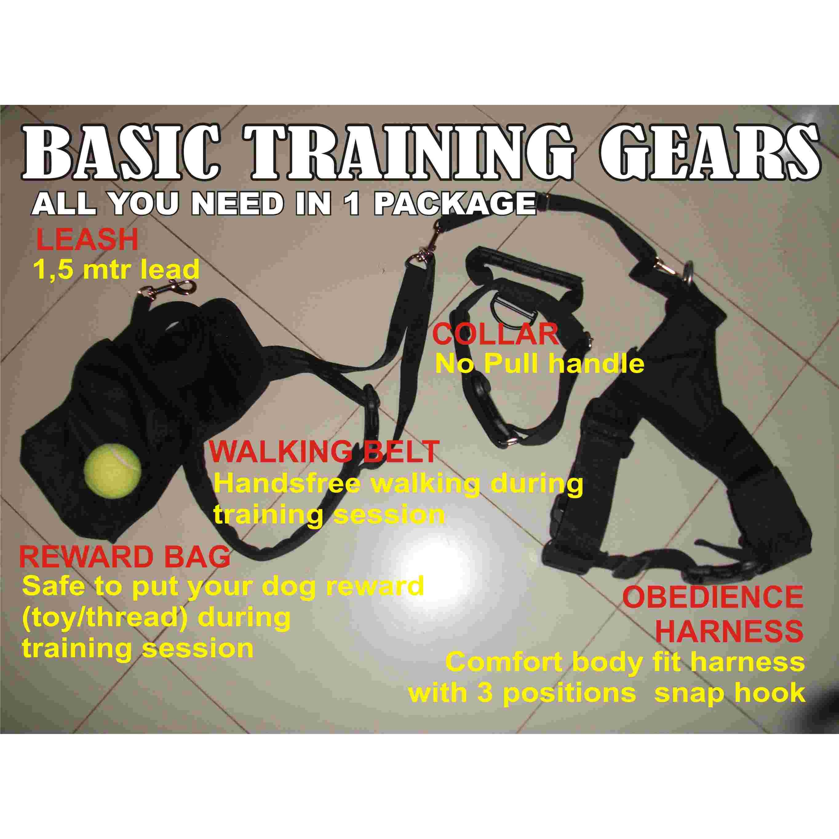 Basic Dog Training Gears Package
